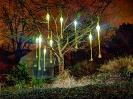 Ein Lichterbaum im Luisenpark